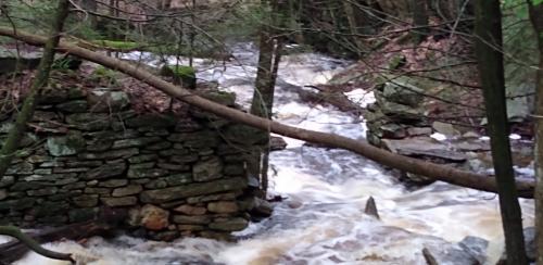 Brook below Upper North Valley Road Bridge courtesy of Susannah Carey